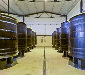ARTADI's fermentation building. Wooden tanks for our Great Wines.