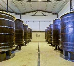 El corazón de la bodega de Artadi. Los tinos de madera donde elaboramos nuestros grandes vinos.
